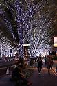 November 7, 2017, Tokyo, Japan - Tree lined street is illuminated with white and blue LED bulbs for the Christmas illumination at the Roppongi Hills shopping mall in Tokyo on Tuesday, November 7, 2017. Some 1.2 million LED lights along side of the Keyakizaka street will be illuminated through Christmas Day.    (Photo by Yoshio Tsunoda/AFLO) LWX -ytd-