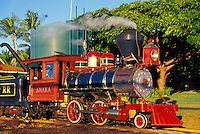 Sugarcane Train Ride in Lahaina