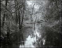 &quot;Reclamation&quot;<br />