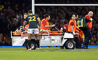 Pictured: Handre Pollard (22) speaks to injured team mate Jean de Villiers of South Africa as he is transferred away after dislocating his knee Saturday 29 November 2014<br />