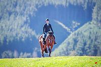 2018 Equestrian Entries NZ Under 25 Dressage Championships. Sunday 22 April. Copyright Photo: Libby Law Photography