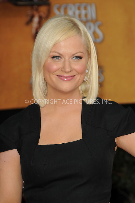 WWW.ACEPIXS.COM . . . . . ....January 30 2011, Los Angeles....Amy Poehler arriving at the 17th Annual Screen Actors Guild Awards held at The Shrine Auditorium on January 30, 2011 in Los Angeles, CA....Please byline: PETER WEST - ACEPIXS.COM....Ace Pictures, Inc:  ..(212) 243-8787 or (646) 679 0430..e-mail: picturedesk@acepixs.com..web: http://www.acepixs.com