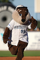 West Michigan Whitecaps mascot during a game vs. the Fort Wayne TinCaps at Fifth Third Field in Comstock Park, Michigan August 18, 2010.   Fort Wayne defeated West Michigan 5-1.  Photo By Mike Janes/Four Seam Images