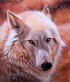 Sandi, REALISTIC ANIMALS, REALISTISCHE TIERE, ANIMALES REALISTICOS, paintings+++++,USSN63,#a#, EVERYDAY ,wolf,wolves ,wolf,wolves ,puzzles