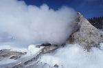 steam at Giant Geyser