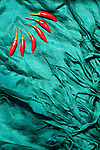 Red Chillies Blue Silk - Red chillies and turquoise blue layered silk shawl.