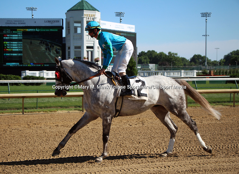 May 31, 2014: Set the Sail breaks away from the pony in the post parade of the Opening Verse, Churchill Downs.  He is ridden by Corey Lanerie, owned by Eutrophia Farm, and trained by Charles LoPresti.  Mary M. Meek/ESW/CSM
