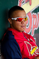 Kolten Wong (4) of the Springfield Cardinals sits in the dugout during a game against the Arkansas Travelers at Hammons Field on May 8, 2012 in Springfield, Missouri. (David Welker/ Four Seam Images)
