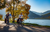 Oesterreich, Niederoesterreich, Kulturlandschaft Wachau - UNESCO Weltkultur- und Naturerbe: Radfahrer unterwegs auf dem Donauradweg | Austria, Lower Austria, Wachau Cultural Landscape - UNESCO World's Cultural and Natural Heritage, cyclists at Danube Cycling Route