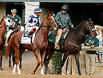 """October 07, 2018 : #2 Ice City Ghost and jockey Ricardo Santana Jr. before running in the 28th running of The Dixiana Bourbon (Grade 3) $250,000 """"Win and You're In Breeders' Cup Juvenile Turf Division"""" at Keeneland Race Course on October 07, 2018 in Lexington, KY.  Candice Chavez/ESW/CSM"""