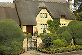 Tom Mackie, FLOWERS, photos, Thatched Cottage & Garden, Chipping Campden, Cotswolds, Gloucestershire, England, GBTM090158-1,#F# Garten, jardín