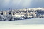 Ice Storm, Ontario, Canada