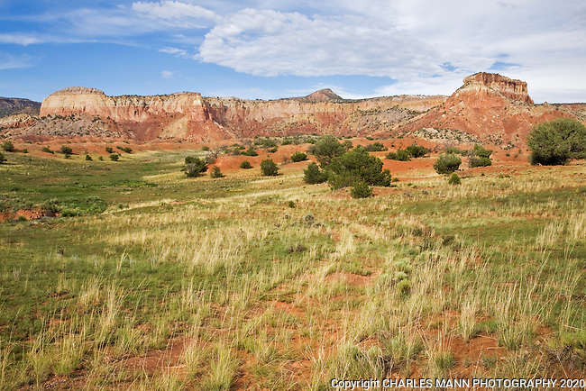 The red cliffs of Kitchen Mesa around the resort of Ghost Ranch near the New Mexico town of Abiquiu are very colurful and provide locals and visitors alike with some excellent hiking and sight seeing. In laste summer grasses fill the high meadow.