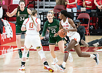 COLLEGE PARK, MD - DECEMBER 8: Diamond Miller #14 of Maryland dribbles by Bri Rozzi #22 of Loyola during a game between Loyola University and University of Maryland at Xfinity Center on December 8, 2019 in College Park, Maryland.