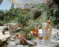 Europe/France/Provence -Alpes-Cote d'Azur/83/Var/Bandol: Dégustation de vin rosé AOC Bandol dans le jardin du Chateau de Pibarnon