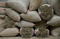 ALBANIA, Shkodra, farming of herbal and medical plants, storage of sage / ALBANIEN, Shkoder, Anbau von Heil- und Gewuerzpflanzen, Lager einer Anbaukooperative, getrockneter Salbei