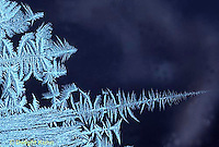 FO02-011e  Frost on window pane