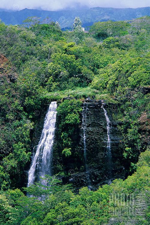 'Opaeka'a Falls, Wailua River, Wailua River State Park, Kaua'i.