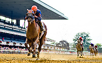 ELMONT, NY - JULY 08: Mind Your Biscuits #2, ridden by Joel Rosario, wins the Belmont Sprint Championship on Stars and Stripes Festival Day at Belmont Park on July 8, 2017 in Elmont, New York (Photo by Scott Serio/Eclipse Sportswire/Getty Images)
