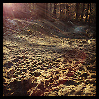 The sun shines on frozen tire tracks on a trail heading down into the Wissahickon Valley Park on January 2, 2013.