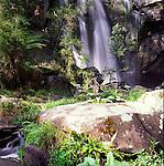 Phantom Falls waterfall, Angahook-Lorne State Park, near Lorne, Victoria, Australia