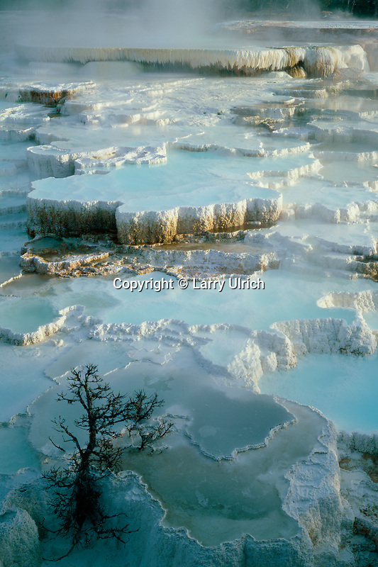 78 Spring<br />