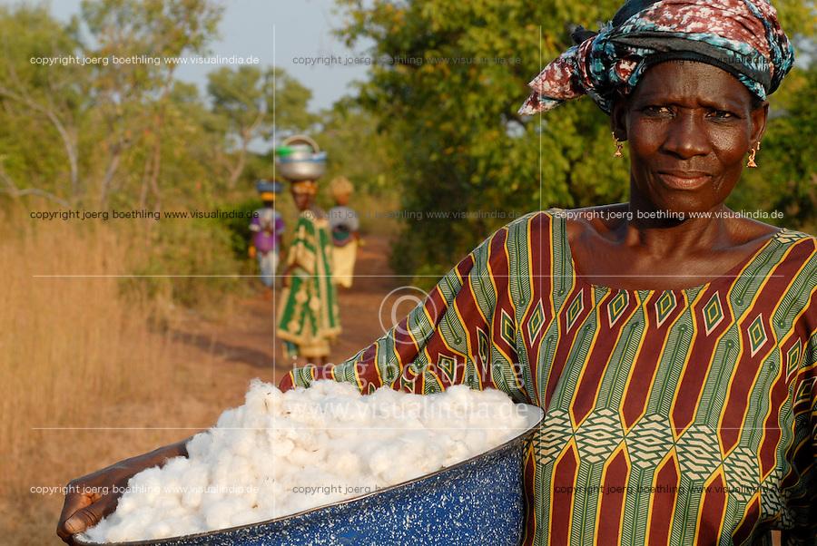 MALI , Bougouni, Fair trade und Biobaumwolle Projekt , Frauen bei Baumwollernte - MALI , Bougouni , women harvest fair trade organic cotton