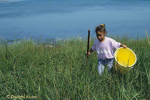 AC35-006z  Girl collecting specimens at salt marsh