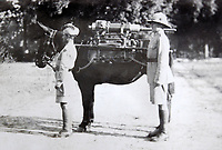 BNPS.co.uk (01202 558833)<br /> Pic: LaceyScott&Knight/BNPS<br /> <br /> Mules hauled up the artillery.<br /> <br /> From the far reaches of the British Empire - Remarkable previously unseen photos of a forgotten military campaign has come to light 100 years later.<br /> <br /> The little known Waziristan campaign of 1919 and 1920 saw the British and Indian forces engaged in fierce fighting against Afghan tribesman who invaded northern India.<br /> <br /> However, the conflict, which saw the use of the might of the RAF in targeted bombing raids, has become almost lost to history since it took place just after the Great War.<br /> <br /> The battleground was the rugged, remote, mountainous region which is modern day northern Pakistan, on the southern border of Afghanistan.