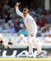 Graeme Swann of England celebrates after taking the wicket of Australian batsman Chris Rogers - England vs Australia - 1st day of the 5th Investec Ashes Test match at The Kia Oval, London - 21/08/13 - MANDATORY CREDIT: Rob Newell/TGSPHOTO - Self billing applies where appropriate - 0845 094 6026 - contact@tgsphoto.co.uk - NO UNPAID USE