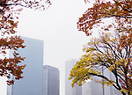 Osaka modern architecture office buildings view through the foliage of colorful autumn trees and morning mist. Downtown Chuo-ku financial distric high-rise towers, Crystal tower and other high rises. Chūō-ku ward, Osaka, Japan 2017.