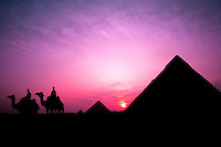 Colorful sunset with men with camels silhouetted against the famous Great Pyramids of Giza Egypt