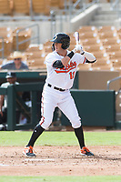 Glendale Desert Dogs second baseman Steve Wilkerson (12), of the Baltimore Orioles organization, at bat during an Arizona Fall League game against the Scottsdale Scorpions at Camelback Ranch on October 16, 2018 in Glendale, Arizona. Scottsdale defeated Glendale 6-1. (Zachary Lucy/Four Seam Images)