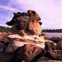 Hornby Island, Northern Gulf Islands, BC, British Columbia, Canada - Unusual Sandstone Rock Formations along Coastline at Tribune Bay Provincial Park
