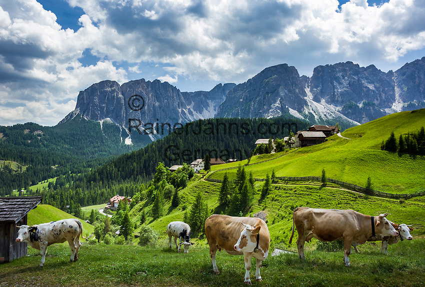 Italy, South Tyrol (Trentino - Alto Adige), Campill Valley (Val di Longiarù): mountain village Campill (Longiarù) - hamlet Misci and Puez mountains (Gruppo del Puez)   Italien, Suedtirol (Trentino - Alto Adige), Dolomiten, Campilltal: Bergdorf Campill - Weiler Misci vor der Puezgruppe