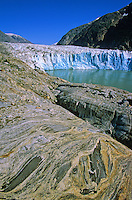 Tidewater face of Dawes Glacier with swirling pattern in metamorphic rocks on shore of the Endicott Arm of Tracy Arm-Fords Terror Wilderness Area in Tongass National Forest, Alaska, AGPix_0685.