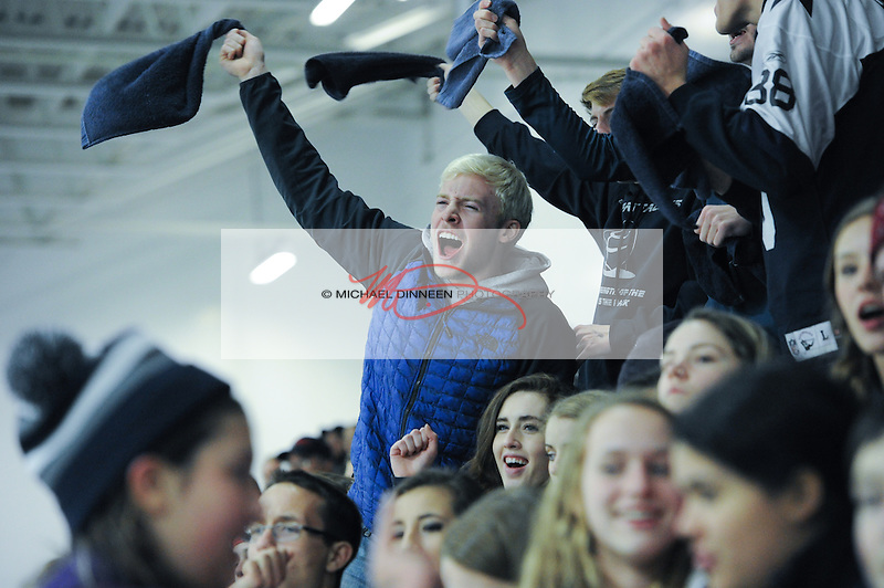 Eagle River senior Bryce Carpenter, center, leads the cheers in the third period of the Wolves' 3-2 win over Chugiak  River Dec. 5, 2015.  Photo for the Star by Michael Dinneen