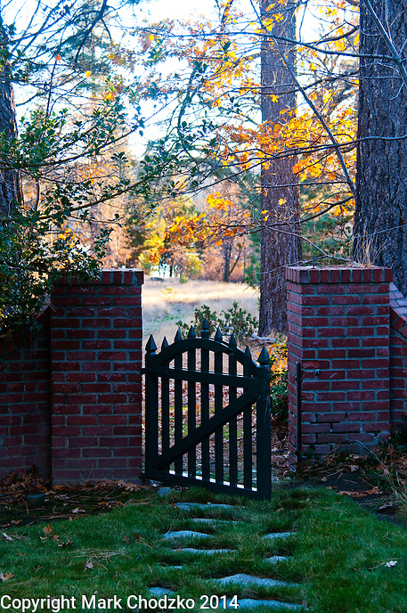 gate opens to the woods at sunset on a fall evening