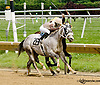 Grand Mast at Delaware Park racetrack on 6/14/14