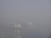 NITER&Oacute;I - RIO DE JANEIRO - RJ, 29 DE JUNHO 2012 - SERRA&Ccedil;&Atilde;O COBRE PARTE DA CIDADE DO RIO DE JANEIRO.  Nesta manh&atilde; de sexta (29) at&eacute; +ou-  09:40  a cidade do Rio de Janeiro e parte davizinha cidade de Niter&oacute;i amnheceu coberta pela n&eacute;voa atrapalhando a visibilidade da travessia das Barcas Rio/Niter&oacute;i onde funcionou com radares e apito sonoro.<br /> FOTO RONALDO BRAND&Atilde;O/BRASIL PHOTO PRESS