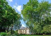 France, Indre-et-Loire (37), Azay-le-Rideau, parc et château d'Azay-le-Rideau au printemps, allée d'entrée vers le château et platanes remarquable par leur hauteur (± 47 m / 150-20ans)