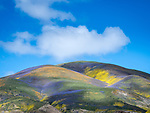 Clouds, colorful wildflowers cover the Temblor Range, Carrizo Plain National Monument, San Luis Obispo County, Calif.