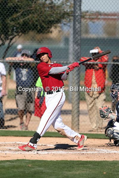 Blake Perkins - 2015 TEAM (Bill Mitchell)