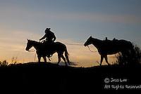 cowboy leading horse at sunset Cowboys working and playing. Cowboy Cowboy Photo Cowboy, Cowboy and Cowgirl photographs of western ranches working with horses and cattle by western cowboy photographer Jess Lee. Photographing ranches big and small in Wyoming,Montana,Idaho,Oregon,Colorado,Nevada,Arizona,Utah,New Mexico.