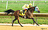 Chndakasexpress winning at Delaware Park on 9/8/16