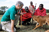 Lolgorian, Kenya. Siria Maasai; White man discussing cattle husbandry with Samuel Sakaja and his son also Samuel.