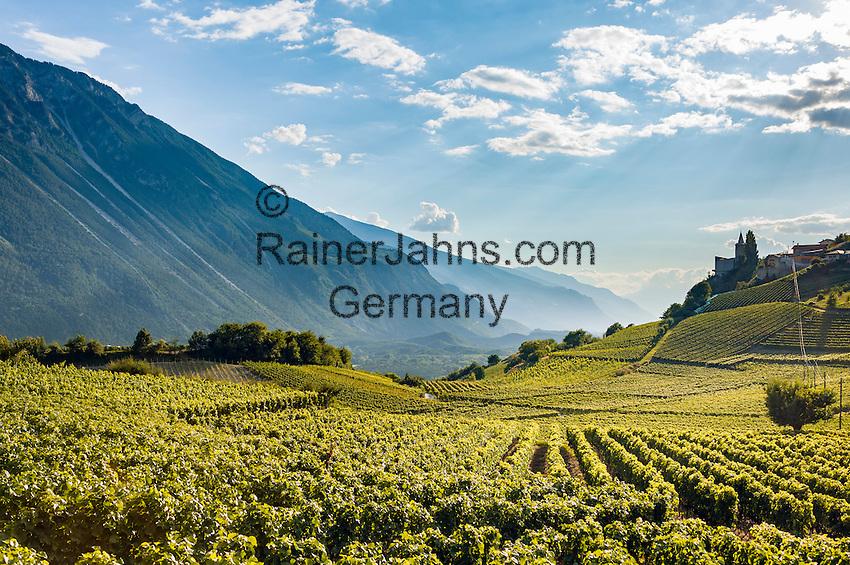 Switzerland, Canton Valais, wine village Varen near Leuk: winegrowing at Rhone-Valley   Schweiz, Kanton Wallis, Weindorf Varen bei Leuk: Weinanbau im Rhonetal