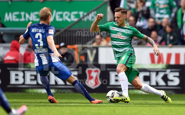 FUSSBALL     1. BUNDESLIGA      31. SPIELTAG    SAISON 2016/2017  SV Werder Bremen - Hertha BSC Berlin                          29.04.2017 Per Ciljan Skjelbred gegen Robert Bauer (re, SV Werder Bremen)