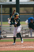 Oakland Athletics catcher Iolana Akau (11) at bat during a Minor League Spring Training game against the Chicago Cubs at Sloan Park on March 13, 2018 in Mesa, Arizona. (Zachary Lucy/Four Seam Images)