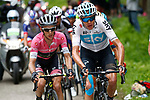 Chris Froome (GBR) Team Sky and Maglia Rosa Simon Yates (GBR) Mitchelton-Scott in the lead group near the finish of Stage 14 of the 2018 Giro d'Italia, running 186km from San Vito al Tagliamento to Monte Zoncolan features Europe's hardest climb, Italy. 19th May 2018.<br /> Picture: LaPresse/POOL-Luca Bettini | Cyclefile<br /> <br /> <br /> All photos usage must carry mandatory copyright credit (&copy; Cyclefile | LaPresse/POOL-Luca Bettini)